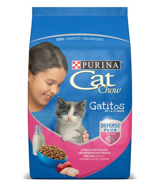 cat-chow-gatitos