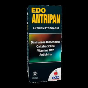 Edo-Antripan