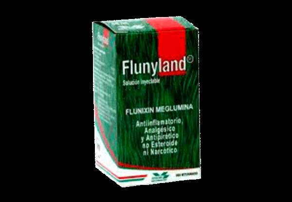 Flunyland