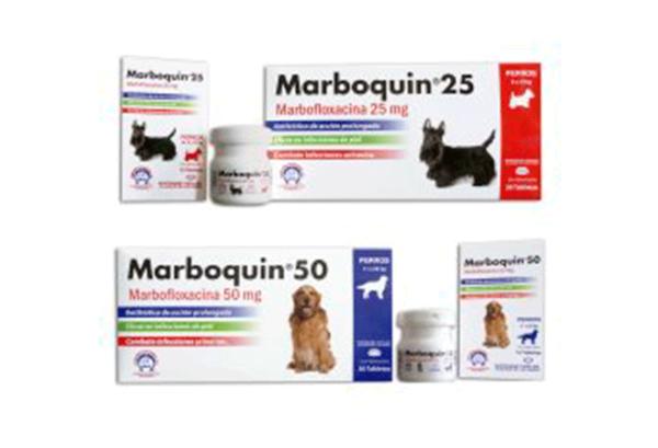 Marboquin