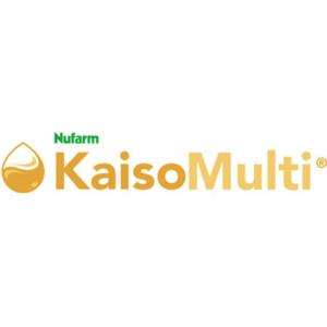Kaiso-Multi