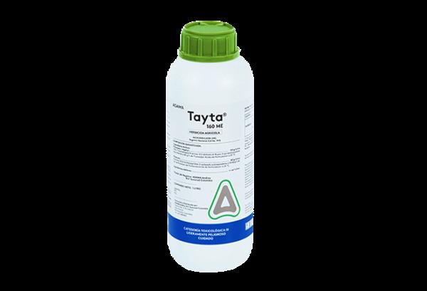 Tayta-Litro