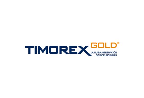 Timorex-Gold-Logo