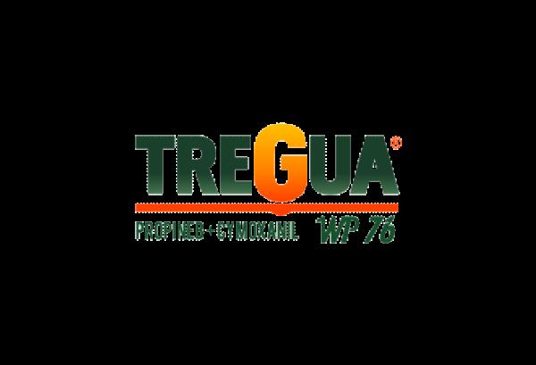 Tregua-Logo