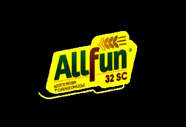 All-fun