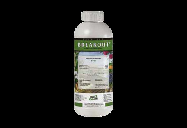 Breakout-Litro